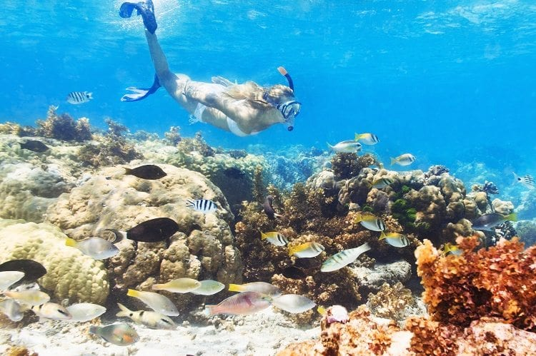 Learn Unique Things To Do In Cancun From TPI/Apple Vacations.