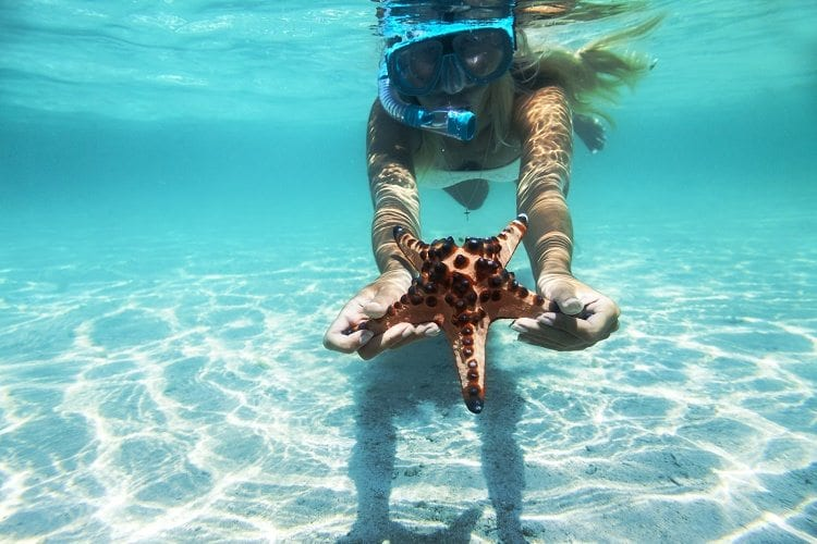 Unusual Things To Do In The Bahamas-Travel Planners International