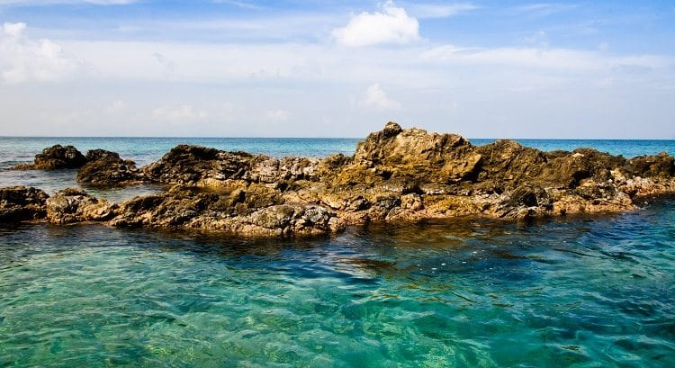 Weird And Unusual Things To Do And See In Puerto Rico-TPI